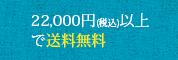 10,800円以上(税込)で送料無料!