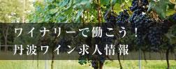 ワイナリーで働こう 丹波ワイン求人情報